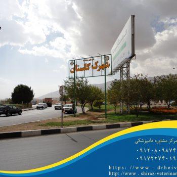 دامپزشکی شهرک گلستان شیراز