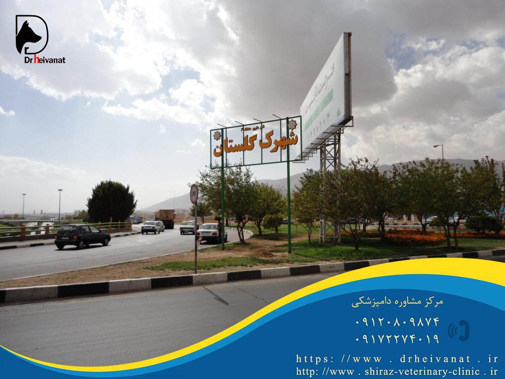 Photo of دامپزشکی شهرک گلستان شیراز